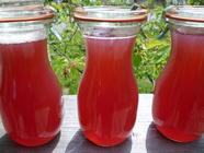 Rhubarb Ginger Syrup found on PunkDomestics.com