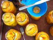 In the Pits: Canning Stone Fruit found on PunkDomestics.com