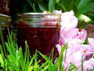 Strawberry Peony Jam found on PunkDomestics.com