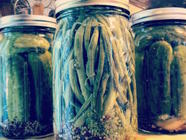 Pickled Dilly Beans found on PunkDomestics.com