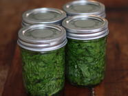 Pickling Mustard Greens