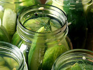 Crisp Garlic Dill Pickles