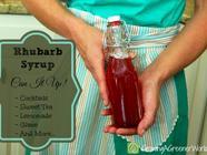 Rhubarb-Vanilla Syrup found on PunkDomestics.com
