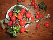 Rose Hip Jelly found on PunkDomestics.com