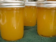 Golden Sunshine Jam found on PunkDomestics.com