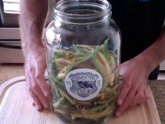 How to Make Fermented Garlic Dilly Beans found on PunkDomestics.com