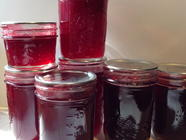 Seedless Raspberry Jam found on PunkDomestics.com