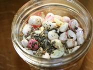 Canning Shell Beans found on PunkDomestics.com