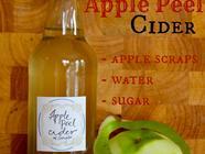 Got Apple Peels?  Make a Simple Apple Cider! found on PunkDomestics.com