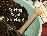 Spring Seed Starting found on PunkDomestics.com