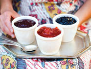 Jam or Jelly or Preserves? (Or Marmalade?) found on PunkDomestics.com