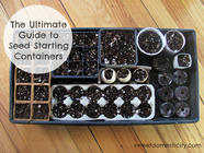 Ultimate Guide to Seed Starting Containers found on PunkDomestics.com