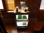 Urban Cultivator: Answer to Home Sprouting?