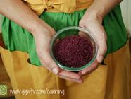 Wine Salt Recipe