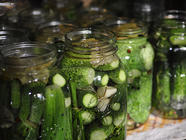 Dill Pickles: Refrigerator and Canned
