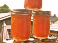 Gingery Apricot Honey Jam