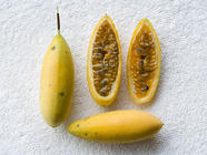 Foraging on Vacation: Breadfruit and Poka found on PunkDomestics.com