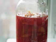 Blood Orangecello found on PunkDomestics.com
