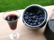 Blueberry Gin found on PunkDomestics.com