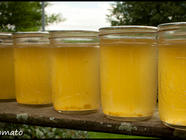 Corn Cob Jelly found on PunkDomestics.com
