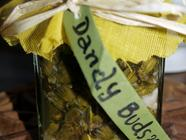 Pickled Dandelion Buds