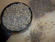 Bite the Flower - Fresh Lavender Syrup found on PunkDomestics.com