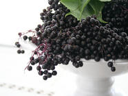 Elderberry Syrup for Colds and Flu found on PunkDomestics.com