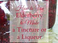 How to Make Elderberry Tincture or Liqueur  found on PunkDomestics.com