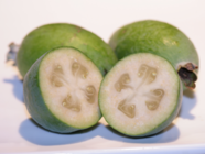Feijoas found on PunkDomestics.com
