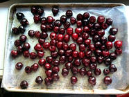 Freezing Cherries found on PunkDomestics.com