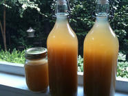 Homemade Jamaican-Style Ginger Beer found on PunkDomestics.com