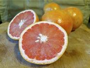 Grapefruit Infused Gin found on PunkDomestics.com