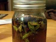 Myrtle Leaf Bitters found on PunkDomestics.com