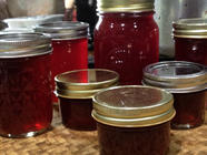Wild Hibiscus Jelly found on PunkDomestics.com