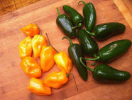 Hot Hot Heat! Fermented Hot Peppers