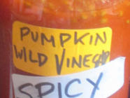 Pumpkin Chili Scrap Vinegar  found on PunkDomestics.com
