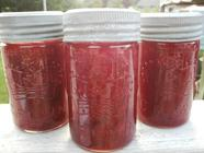 El Espolòn Tequila, Strawberry & Lime Jam found on PunkDomestics.com