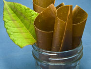 Japanese Knotweed Fruit Leather found on PunkDomestics.com