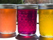 Preserving Wild Harvests- Jelly and Jam found on PunkDomestics.com