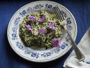 Mallow Risotto found on PunkDomestics.com