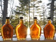 DIY Maple Syrup: We'd Tap That