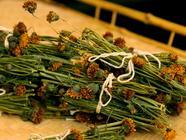 Strawberry Leaf and Navajo Teas found on PunkDomestics.com