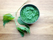 Foraged Nettle Pesto found on PunkDomestics.com