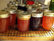 Preserving Cordial / Fruit Juice Concentrate found on PunkDomestics.com