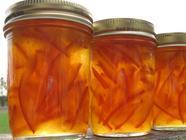 Orange Marmalade found on PunkDomestics.com