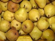Eleven Ways to Put Up Pears
