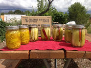Pickle Making Class found on PunkDomestics.com