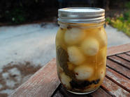 Spicy Pickled Quail Eggs found on PunkDomestics.com