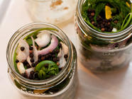Woodland Foraging: Pickled Fiddleheads