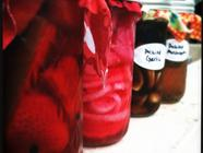 Adventures in Pickling  found on PunkDomestics.com